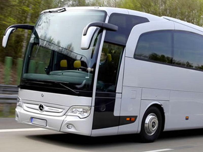 Pullman 55-56 posti argento- Travel & Service